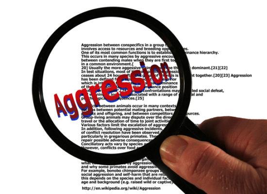 Are zou and aggressive truck driver